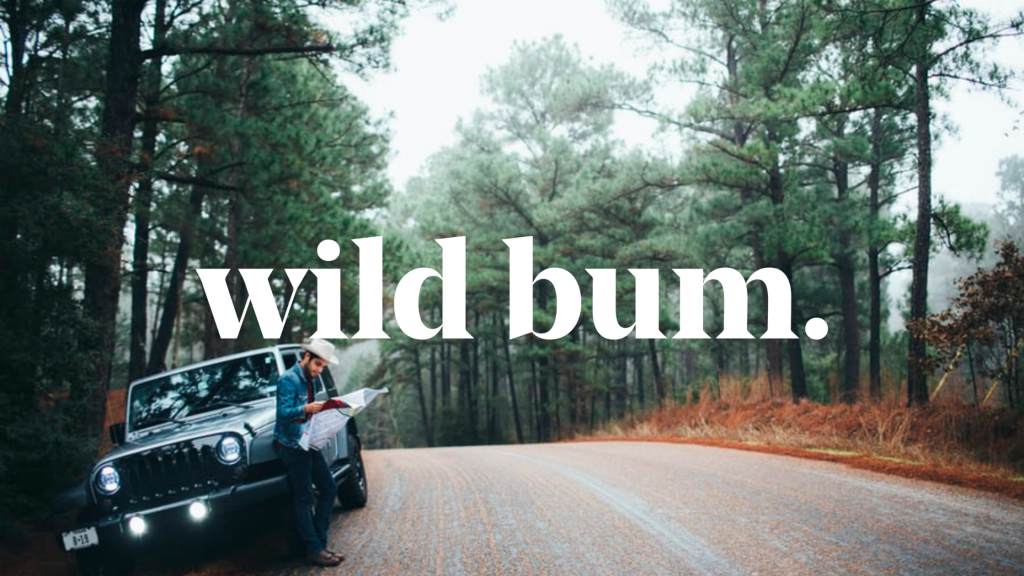 Road Trip Travel Guides